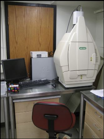Bio-Rad Gel Doc XR Workstation